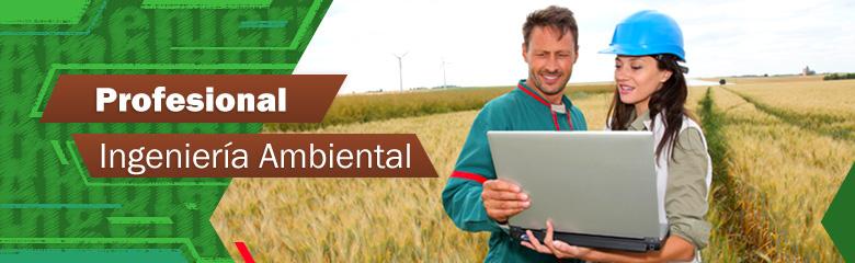 Resultado de imagen para perfil ingenieria medio ambiente